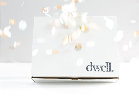 holiday-edition-dwell-niagara-subscription-box