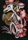 Hare Skeleton