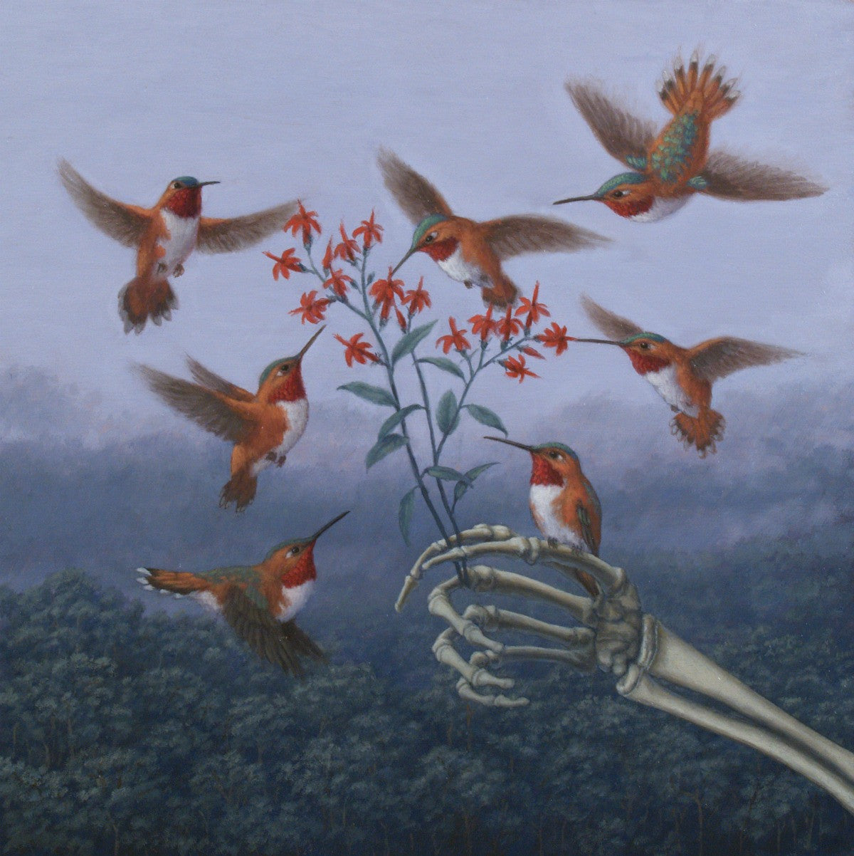 Hummingbirds and Hand