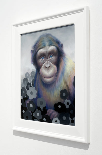 Rainbow Chimp
