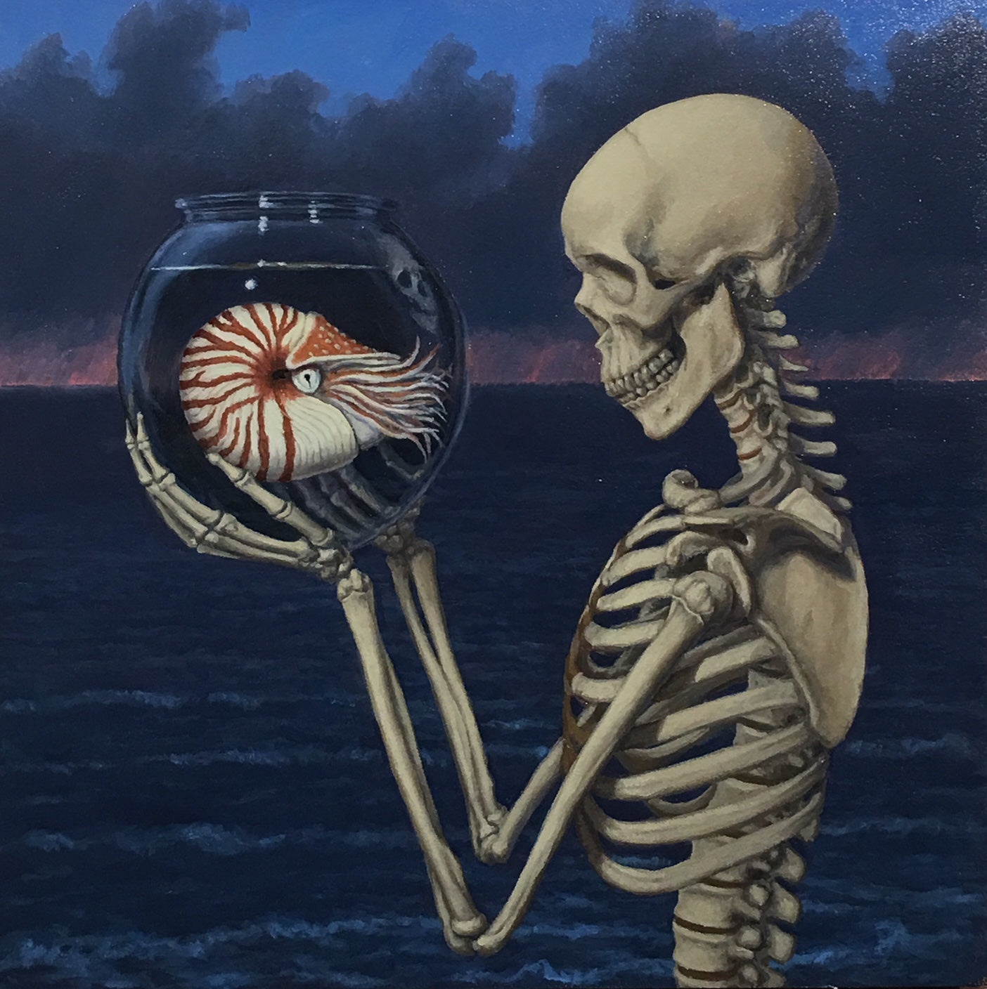 Death and Nautilus