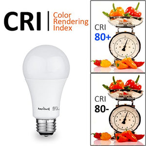 A19 LED Bulbs (100W Equivalent)