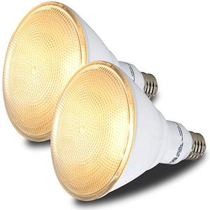 Outdoor Flood Light Bulbs (Glass Lens)