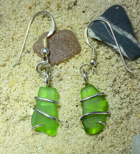 Green Sea Glass Pair in Sterling Silver Tension Wrapped Earrings