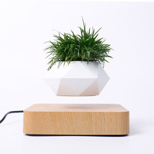Potted plants Magnetic levitation Ornaments  Figure Model Doll Toys Child Gift Cute Planet