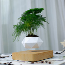 Load image into Gallery viewer, Potted plants Magnetic levitation Ornaments  Figure Model Doll Toys Child Gift Cute Planet