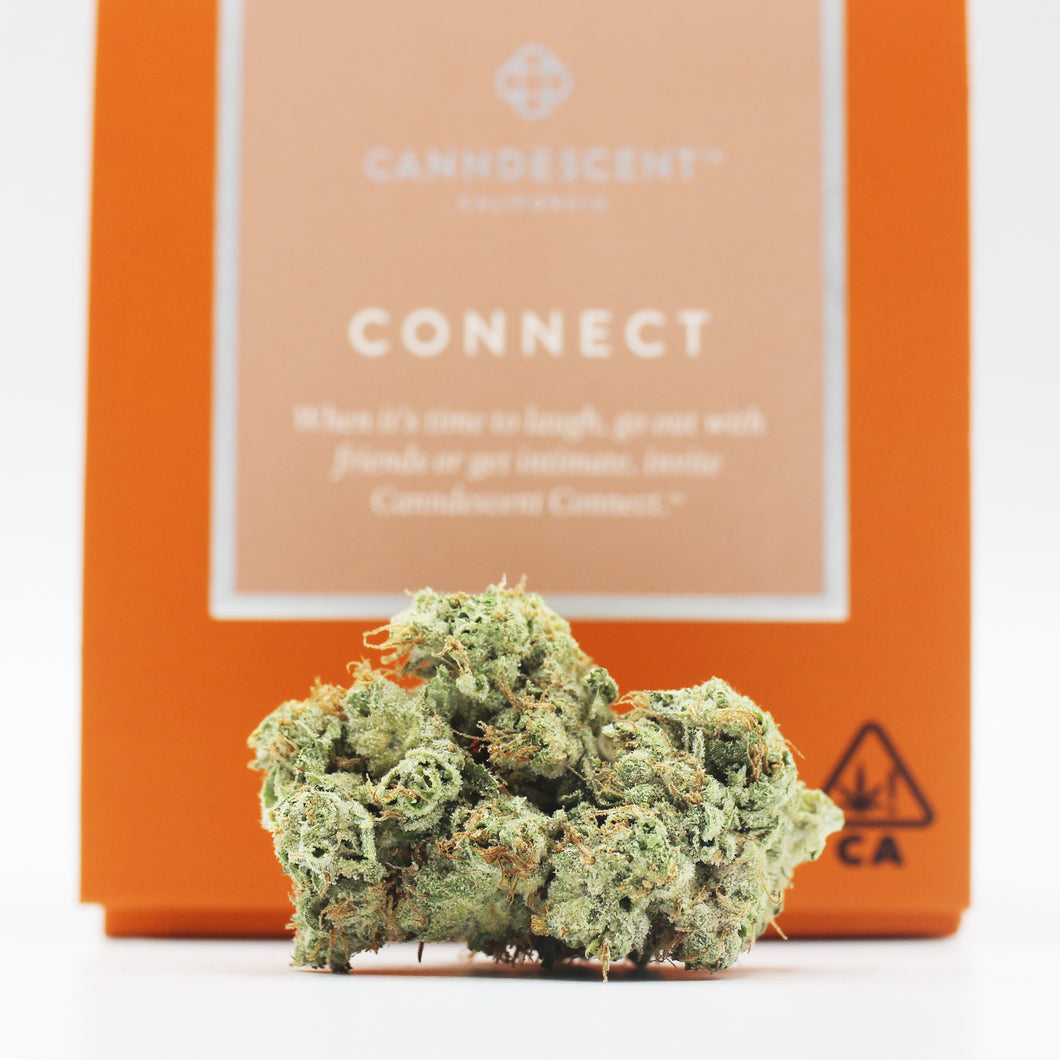 Connect (h) - Canndescent (30% THC)