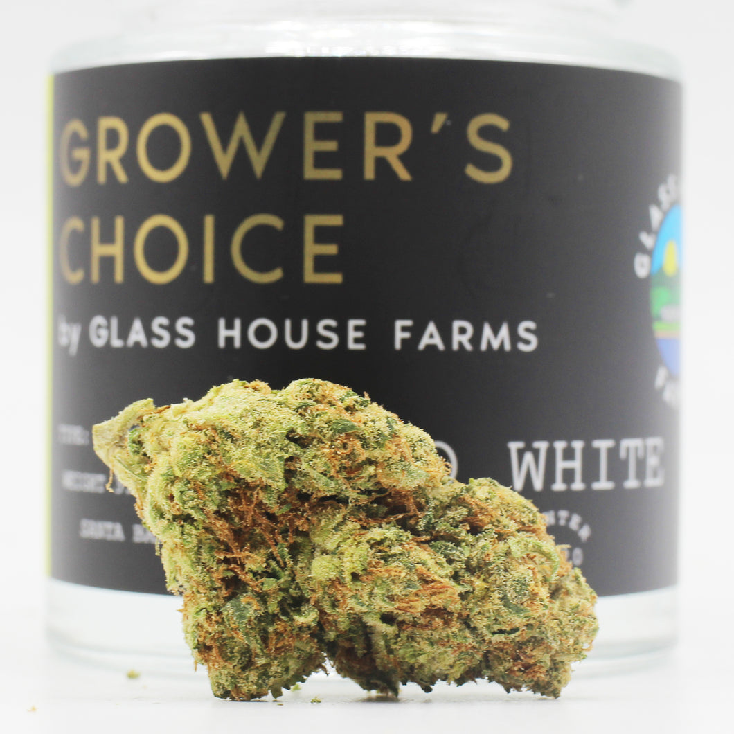 Flo White (s/h) - Glass House Grower's Choice (24.4% THC)