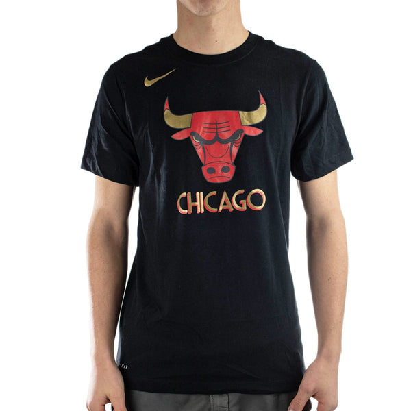 Nike Chicago Bulls NBA Essential Logo T-Shirt CT9440-010-