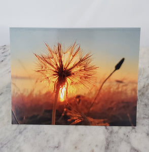 Sample of 6 Gratitude Cards