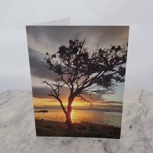 30 Days of Gratitude Cards (Blank Inside)