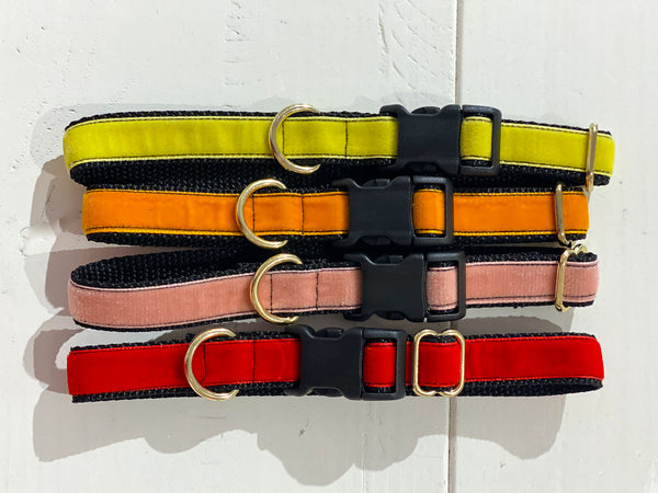Small Velvet Dog Collar