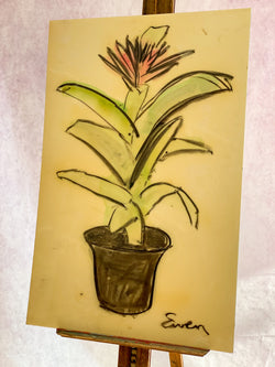 Potted Plant with Pink Flower