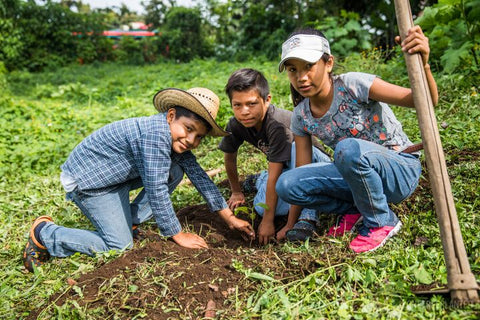 Contented Company Eco Zero Waste Blog One Tree Planted - children