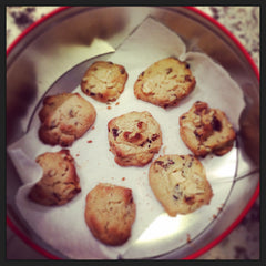 tbt-contented-company-lactogenic-breastfeeding-foods-fennel-cookies