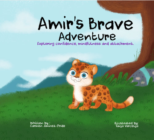Amir's Brave Adventure Book