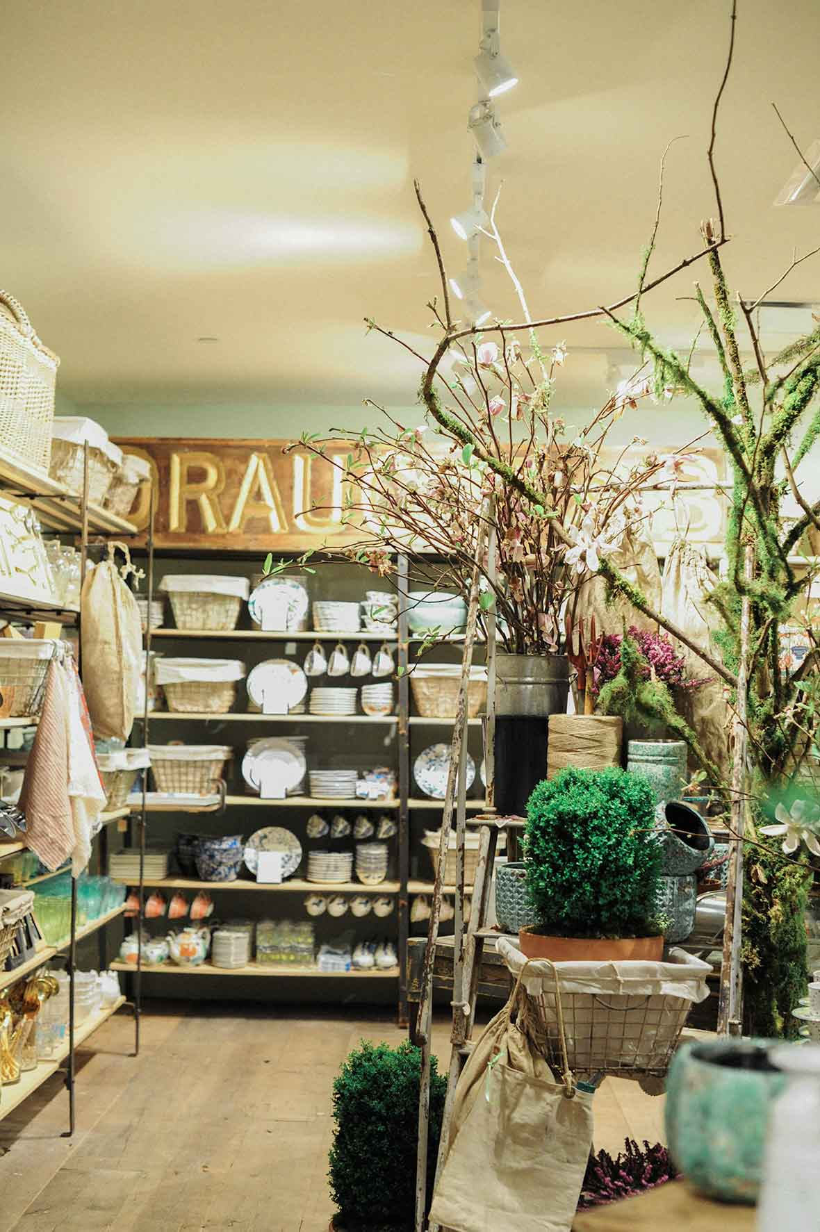 anthropologie home, portland, oregon, reopening