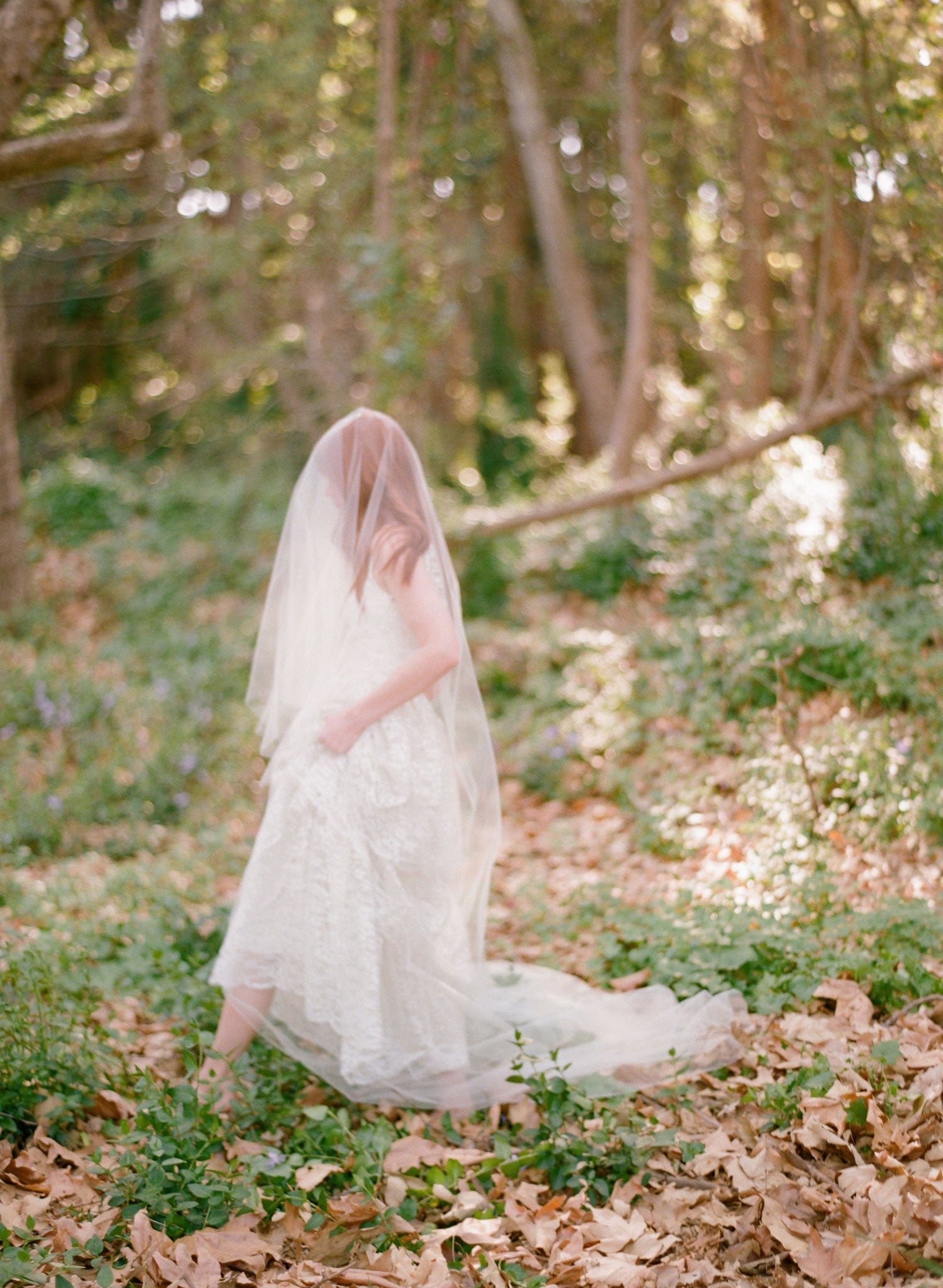 cathedral length bridal veil, twigs and honey