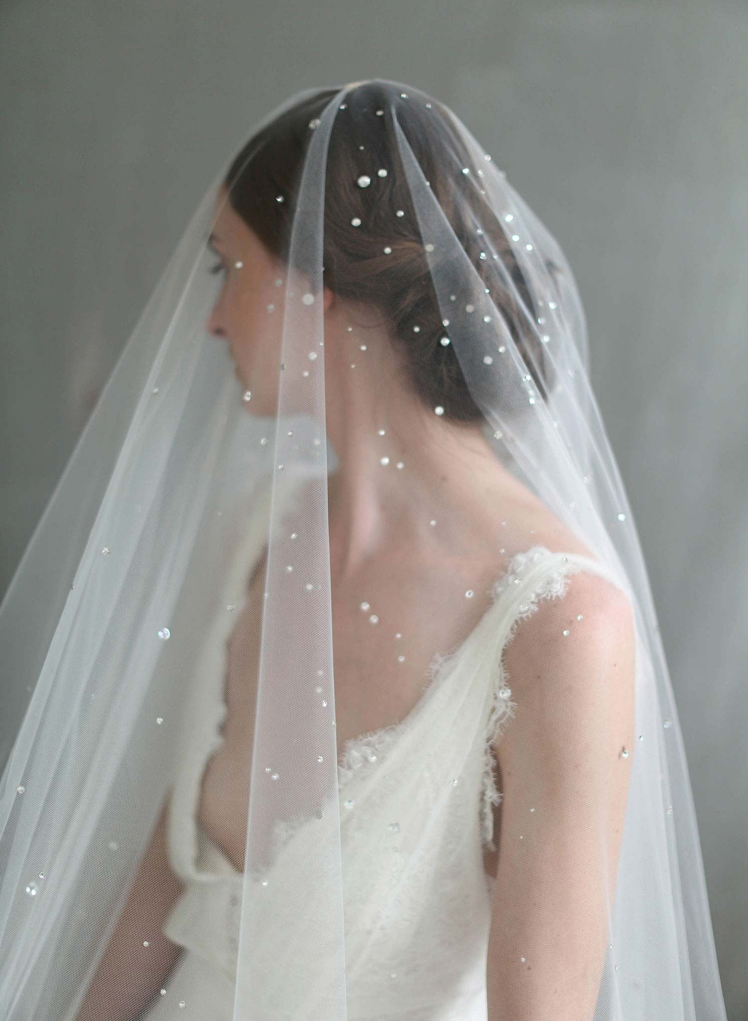 swarovski crystal veil, blusher veil, twigs and honey