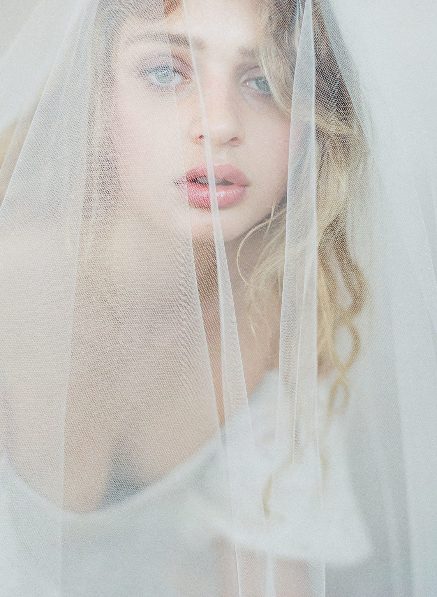 blusher veil, twigs and honey