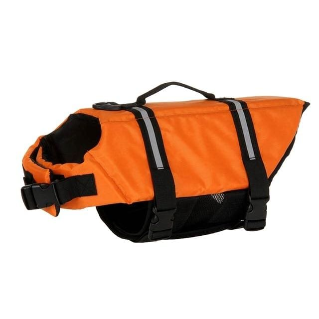 SummerJoy Life Jacket for Small, Medium, and Large Dogs - Mounteen.com