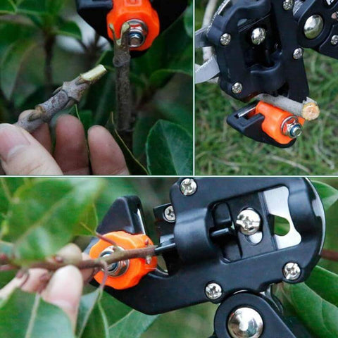 How to Graft a Tree