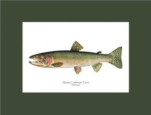 Alaska Cutthroat