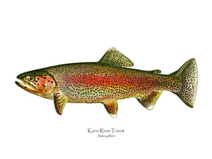 Antique Fish Print: Kern River Trout