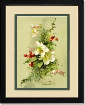 Victorian Print: Christmas Rose