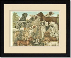 Victorian Print: Antique Dogs