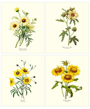 Vintage Yellow Flower Floral Botanical Print Set
