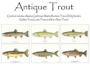 Antique Trout