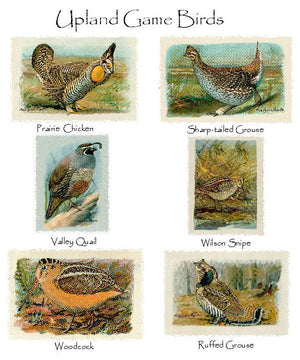 Upland Game Birds  Notecards
