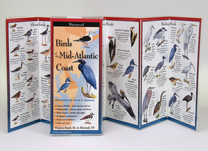 BIRDS OF THE MID-ATLANTIC COAST - FOLDING GUIDE