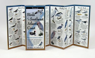 BIRDS OF SE. ATLANTIC COAST - FOLDING GUIDE
