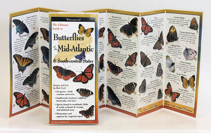 Butterflies of Mid-Atlantic and Southeast