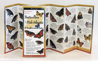 BUTTERFLIES OF THE MID-ATLANTIC STATES - FOLDING GUIDE