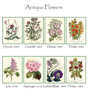 Vintage Botanical Flower Notecards