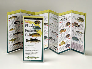 Florida's Freshwater Fishes - Folding Guide