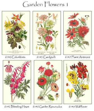 Garden Floral Flower Note Cards