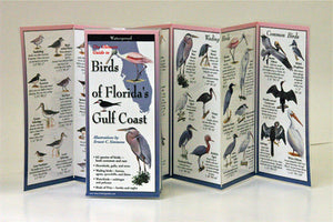 FLORIDA'S GULF COAST BIRDS - FOLDING GUIDE