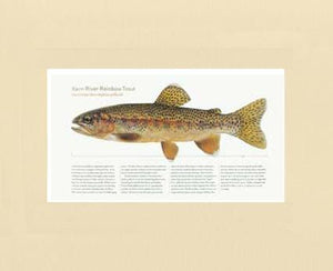 Kern River Rainbow Trout