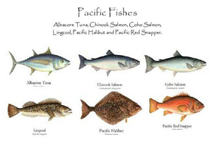 Pacific Fishes