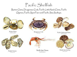 Pacific Shellfish