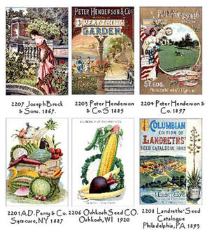 Seed Catalogs Note Card Set