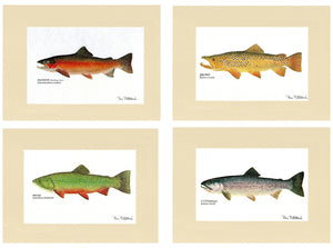 Trout Print Art Set