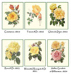 Yellow RosesNotecards