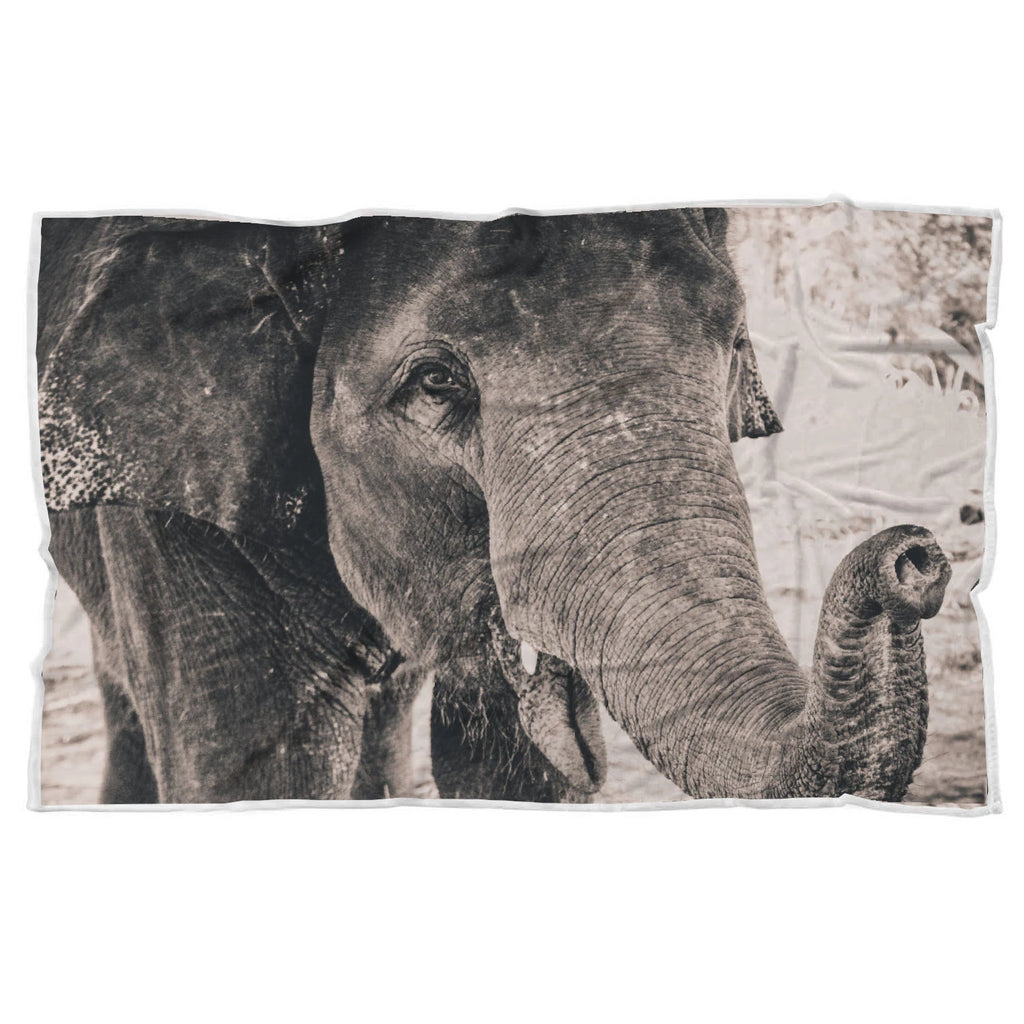 Grayscale Elephant in the Wild Soft Sherpa Blanket