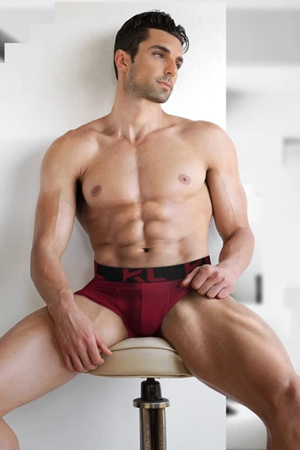 Men Briefs - 6 PACK BURGUNDY/ TEAL/ GRAY + BLACK