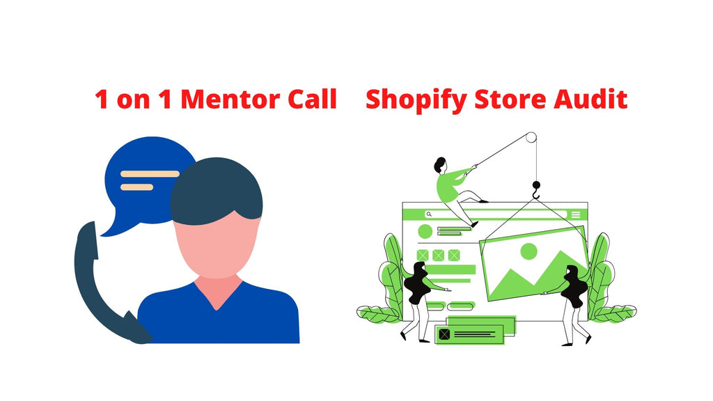 1 on 1 Call and Shopify Store Audit
